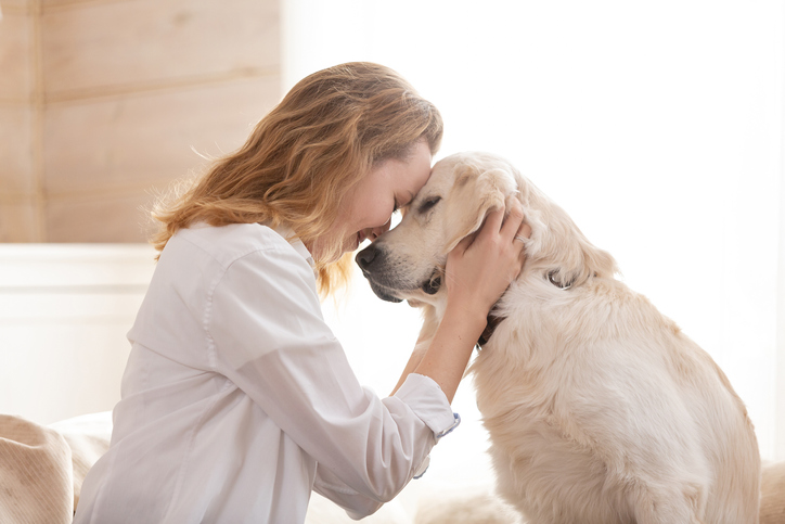 healthy pet and healthy owner