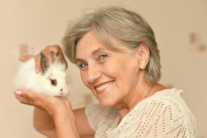 pet rabbits for seniors